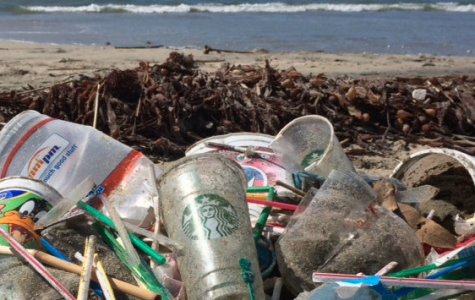 Why Plastic Straws Are Just Now Being Banned