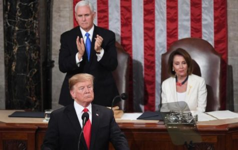 Trump's 2019 State of the Union Address is Not What We Needed