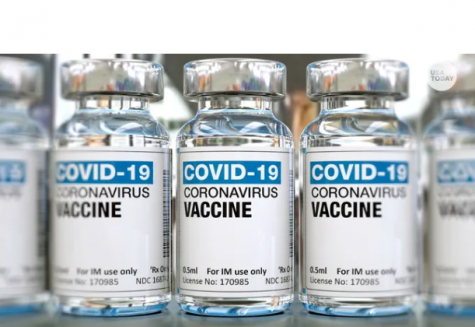 The phases in which the COVID vaccine will be distributed- and when life will return to normalcy